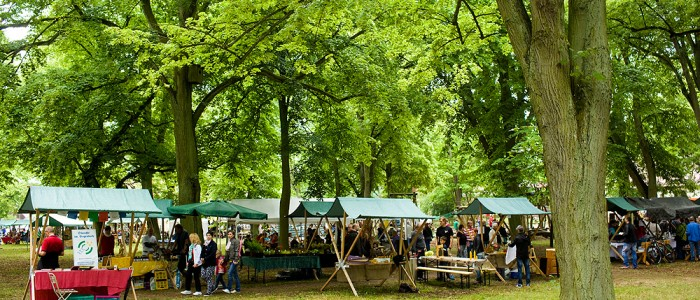Waldfest Menz 2015