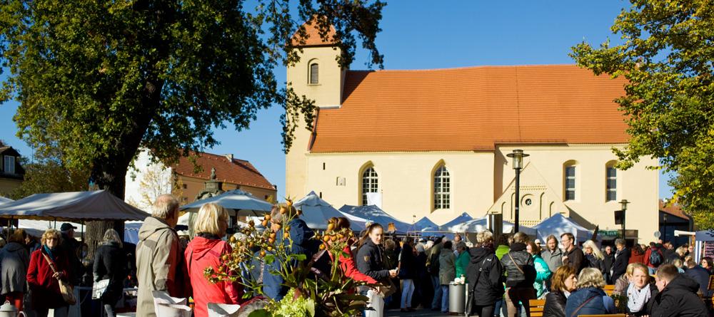 Rheinsberg-Markt_MG_5740